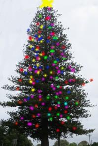 benjamins ch tree